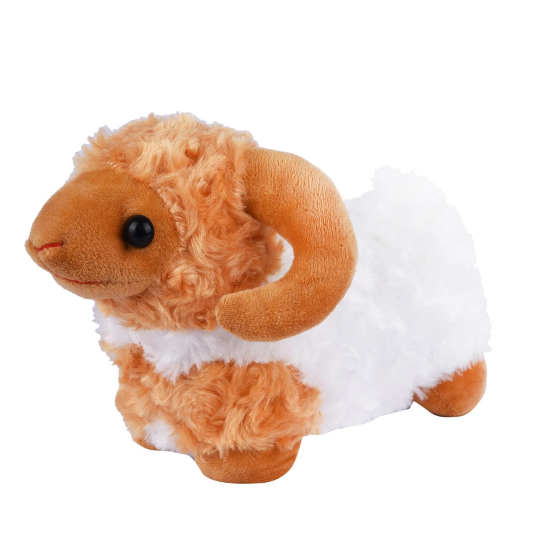 خروف العيد100175